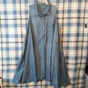 Chelsea and Theodore Denim Swing Dress